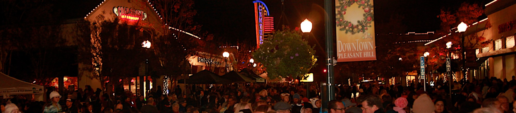 Light up the Night Tree Lighting 2014.jpg