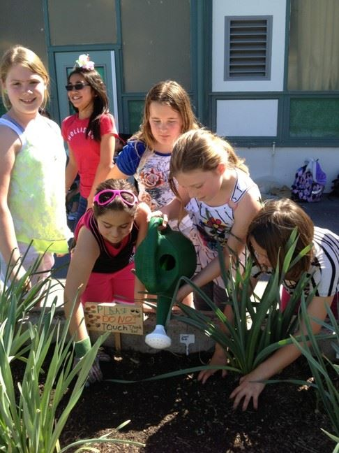 sequoia elementary green team students